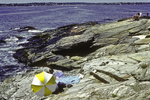 People sunning themselves on the rocks in Jamestown, RI at Beavertail State Park