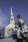 Snow covered tree on Phillipston Town Common