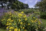 Flower Gardens in Prescott Park