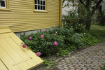 Yellow house and flowers at Strawberry Banke
