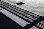 Shadows on the roadway