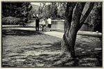 Three people walking in Elm park in Worcester, MA
