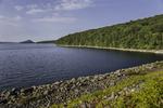 Shoreline of the Quabbin Reservoir