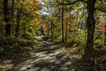 Old dirt road through the autumn woods