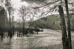 Heavy rain falls on the Tully River