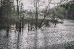 Tully River in Royalston, MA - heavy rain