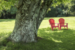 Two red chairs on the grass at the Norman Rockwell Museum
