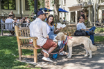 A couple with their dog sit on a bench in a park in Harvard Square
