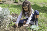 Pretty six year old helping to plant a garden