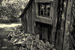 An old shed in black and white