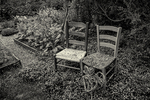 Two chairs in a garden