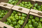 Peppers boxed and ready for delivery