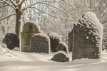 Grave stones covered in snow - Petersham, MA
