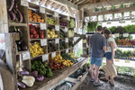 Customers shopping for vegetables in a farm store