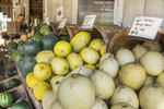Melons for sale at a farm store