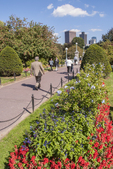 People walking in the Boston Public Garden on a nice summer day