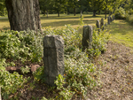 Old granite fence posts at Dana Common, one of the four towns destroyed to make the Quabbin Reservoir