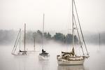 Sailboats moored in Robin Hood Harbor on Georgetown Island, Maine