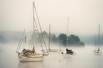 Sailboats on a foggy morning moored at Robin Hood Marina on Georgetown Island, Maine