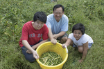 Family of volunteers show what they have just picked