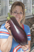 Woman holding a large eggplant just picked at a farm