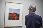 Man looking at a photograph in a gallery
