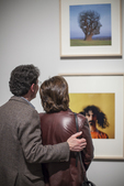 A couple looking at a photograph in a gallery