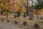 The Alcott burial site in Sleepy Hollow Cemetery in Concord, MA