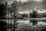 Harvard Pond in Petersham, MA in black and white
