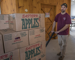 Man pulling boxes of apples to a truck to take to market