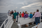 People on a whale cruise on Cape Cod, Massachusetts