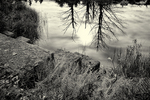 Black and white of pond in the Birch Hill Dam recreation area