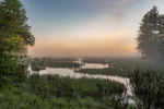 Thousand Acre Swamp at first light