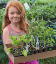 Young girl with a tray of plants