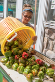 Woman preparing to wask fresh picked peppers