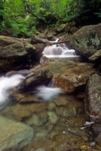 A brook in the White Mountains of New Hampshire