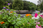 Flowers on a bridge overlooking the Contocook River in Peterborough, NH