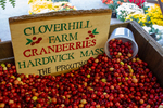 Cranberries for sale at a farm stand