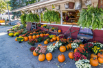 Farm stand in Massachusetts selling fall goodies
