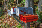 Rural mailboxes and paper tubes