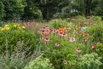 A flower garden in Groton, Massachusetts
