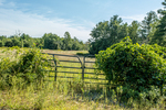 A metal gate toa farm pasture in Hardwick, Massachusetts