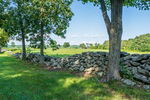 A stone wall and trees line the Upper Church Road in rural Hardwick, Massachusetts