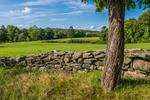 An old stone wall next to a farm field in Hardwick, Massachusetts