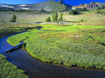 LF 277.  A meadow and stream beneath the south face of Broken Top at sunset.  Three Sisters Wilderness, OR