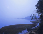 MF 470.  The full moon through fog at sunrise on the east shore of Tomales Bay, CA