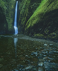 MF 160.  At the base of Oneonta Falls.  Oneonta Gorge, Columbia River Gorge National Scenic Area, OR