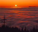 MF 108.  Sunset from the Coburg Hills across a fog-filled Willamette Valley, OR