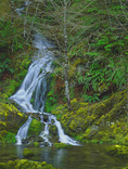 LF 211.  A seasonal waterfall spills into Quartz Creek.  Wild and Scenic River, OR