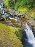LF 64.  Waterfalls along a section of Sweet Creek.  Siuslaw National Forest, OR